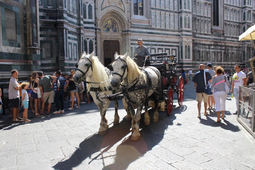 Флоренция, август 2014